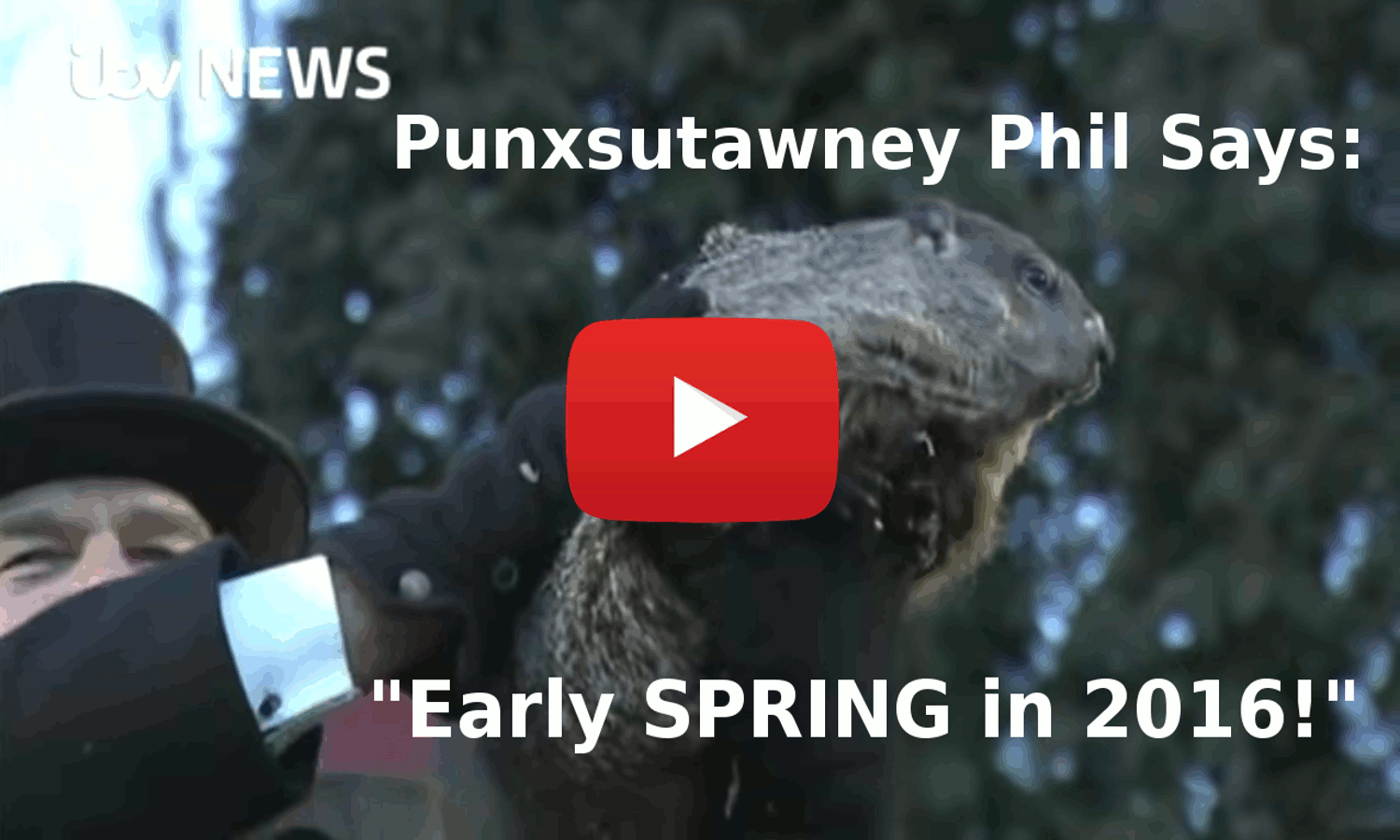 Punxsutawney Phil Declares