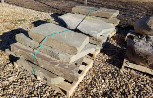 Flat Stone 3/11/20